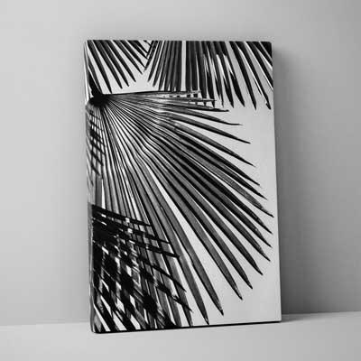 Classic Canvas 40x50cm (16