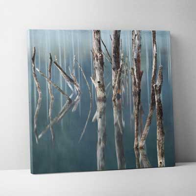 Classic Canvas 60x60cm (24