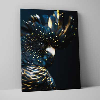 Classic Canvas 75x100cm (30