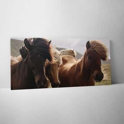 Classic Canvas 75x150cm (30